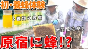 坂田アキラ:AKIRA DYNAMIC SUSHIが「【驚愕】若者の聖地、原宿でまさかの養蜂?坂田アキラが蜂と戯れる『それって』」を公開